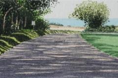Baldwin-near-Kaluanui