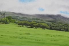 Top of Olinda Hill